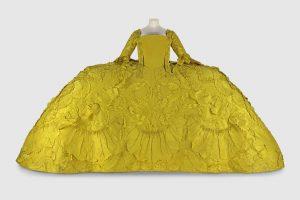 yellow mantua NMS TGCC 300x200 - The Rather Large Yellow Mantua...